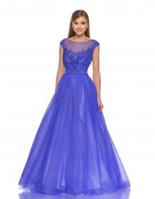 Embroidered Beaded Ball Gown Illusion Tulle Floor Length Prom Dress Sheer Back