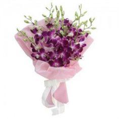 8 Purple Orchid Flowers