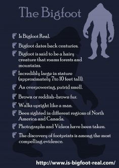 No one really knows for sure if the mysterious Bigfoot is urban legend, folklore, myth, a hoax,  ...