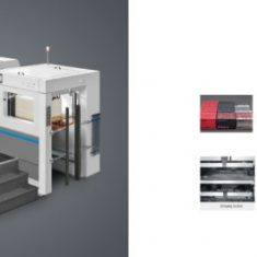 Automatic Die Cutting Creasing Machine with Stripping