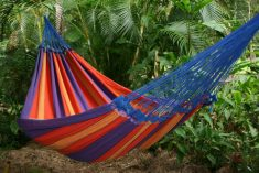 Indoor Hammocks  Bed
