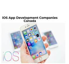 iPhone is one of the most flexible platforms to develop different types of utility applications  ...
