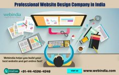 Are you looking for Professional Website Design Company in India? Webindia is one of the leading ...