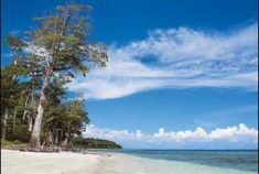 Port Blair City tour After arrival meet & greet at Port Blair Airport & transfer to Hote ...