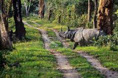 Guwahati Shillong Kaziranga Tour Packages – Guwahati-Shillong-Kaziranga Travel Agents. Cal ...