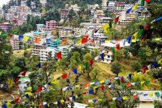 Shimla Honeymoon Tour – Manali, Shimla, Chandigarh Travel Agents. Call@ 9971482795.