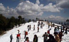Shimla Manali Holiday Packages – Delhi-Kullu Manali Shimla-Delhi Travel Agents. Call@ 9971 ...