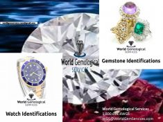 We are an independent jewelry appraisal and gemological services company, with over 60 years com ...