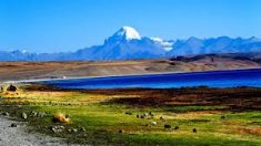 India is one of the most perfect destination to allures the beauties of this land in the most am ...