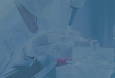 Human Cytokine Antibody Array, 40 Targets