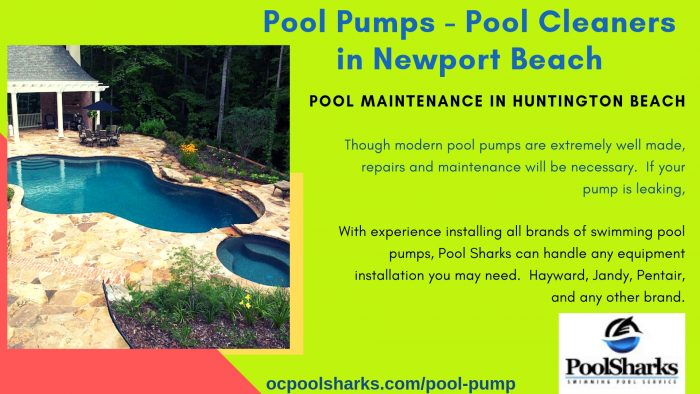 Pool Sharks can help with the troubleshooting and repair. With experience installing all brands  ...