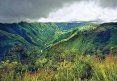 The name Meghalaya means 'abode of clouds' in sanskrit. It is also known as the Scotland of the  ...