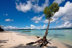 Port Blair is the capital of Andaman and Nicobar which is situated in the Bay of Bengal. It is c ...