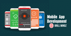 """Brillmindz is a leading mobile apps development and game development company in Dubai. We ..."