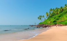 Goa A well-known place for everyone and also a Heaven for parties. Goa, the name itself, implies ...
