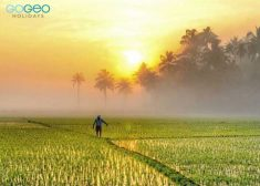 Explore the serenity and village beauty of God's own country. Enjoy the evening beauty of  ...