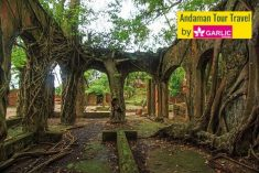 Ross Island was bygone capital of Andaman. The island gives a picture of lost town which is lite ...