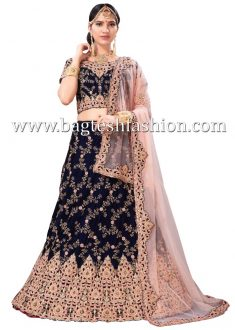 Stunning Navy Blue Velvet Embroidered Lehenga Choli,Navy