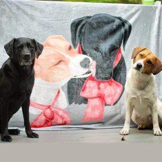 Kundenspezifische Hund Decken Personalisierte Haustier Foto Decken Gem   PersonalisierteFotoDecke