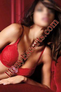 Noida Escorts Service TV actress,college call girls in Noida