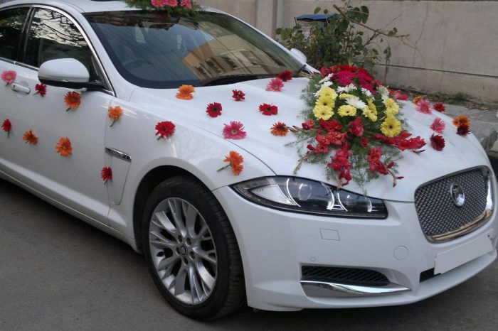 Are Searching For Luxury Wedding Car On Rent In Lucknow?. Chhavi Tours Provided Cheap And Best C ...