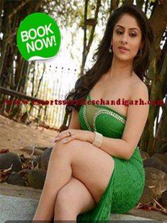 Chandigarh Housewife Escorts