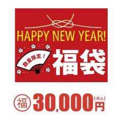 スーパーコピーブランド財布バッグ★2021年新春福袋★レディース04